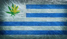 Grunge flag of Uruguay with a cannabis leaf Stock Image