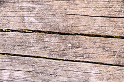 Grunge Floor Boards Royalty Free Stock Photography
