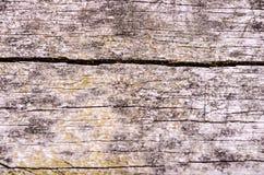 Grunge Floor Boards Stock Photography
