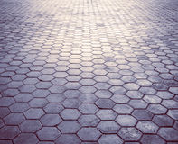 Grunge floor texture and linthing. Stock Photos