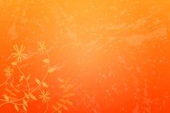 Grunge floral Fotos de Stock