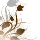 Grunge floral Fotografia de Stock Royalty Free