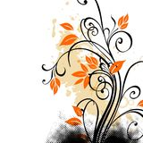 Grunge floral. Orange and black Royalty Free Stock Images