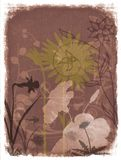 Grunge Floral background. Mixed media illustration with floral background and grunge border Royalty Free Stock Images