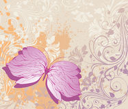 Grunge floral background. With butterfly Royalty Free Stock Image