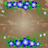 Grunge floral background. Stock Images