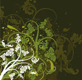 Grunge floral background, royalty free stock images