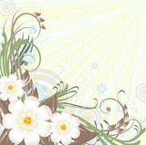 Grunge floral background. In spring tone vector illustration