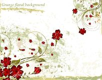 Free Grunge Floral Background Stock Images - 2438154