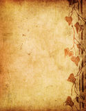 Grunge floral background Royalty Free Stock Image