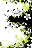 Grunge floral background with copyspace Stock Image