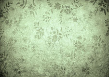 Grunge floral background with space for text Royalty Free Stock Image