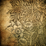Grunge floral background with space for text Royalty Free Stock Photos