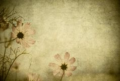 Grunge floral background with space for text or image Royalty Free Stock Images