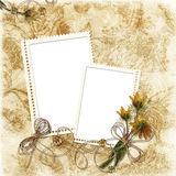Grunge floral background with stamp-frame Royalty Free Stock Images