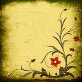 Grunge floral composition Stock Image