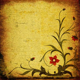 Grunge floral composition Stock Photos