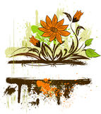 Grunge floral dackground Stock Images