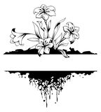Grunge floral frame. With flower and root. Black and white  illustration Royalty Free Stock Photography