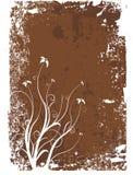 Grunge Floral Frame Royalty Free Stock Images