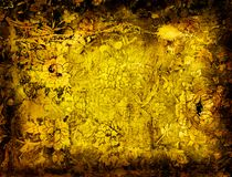 Grunge floral frame Stock Images