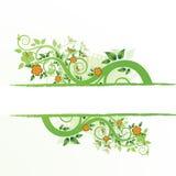 Grunge floral frame Stock Photos