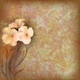 Grunge Floral Illustratiun With Flowers Stock Images