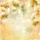 Grunge floral paper background. Royalty Free Stock Photo