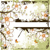 Grunge floral space for text Stock Photo