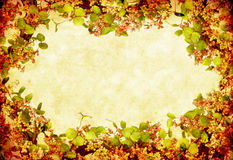 Grunge Floral Wreath Stock Photos