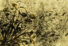 Grunge florale Photos libres de droits