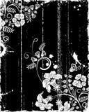 grunge florale de trame Image stock