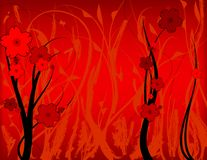 Grunge floreale rosso Fotografia Stock