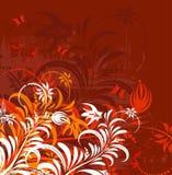Grunge flower background Stock Image