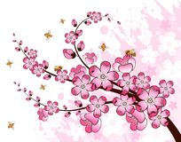 Grunge flower background Royalty Free Stock Image