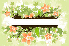 Grunge Flower background Stock Photo