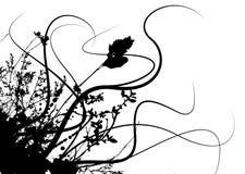Grunge flower storm Stock Photo