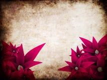 Grunge flowers Stock Photo