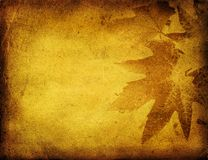 Grunge foliage background Stock Photography