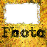 Grunge Fotofeld Lizenzfreie Stockfotos