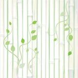 Grunge frame, bamboo. Grunge frame and border series Royalty Free Stock Images