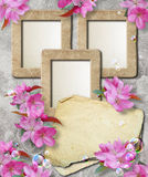 Grunge frame with cherry and paper Stock Image