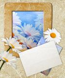 Grunge frame with daisy and paper Royalty Free Stock Photo