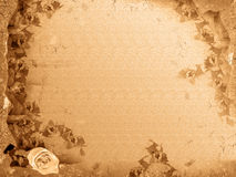 Grunge frame with flower Stock Images