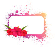 Grunge frame with flowers Royalty Free Stock Photography