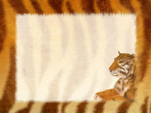 Grunge frame - fur of a tiger Royalty Free Stock Photography