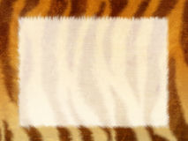Grunge frame - fur of a tiger Royalty Free Stock Images