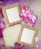 Grunge frame with gladiolus and paper Royalty Free Stock Images