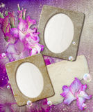 Grunge frame with gladiolus and paper Stock Photography