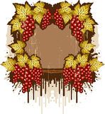 Grunge frame with the grapes Stock Image